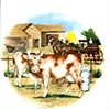 Farm house cows